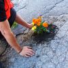 6. flower pot 9