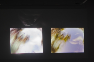 LStrauss_if the blue sky, if movement_100
